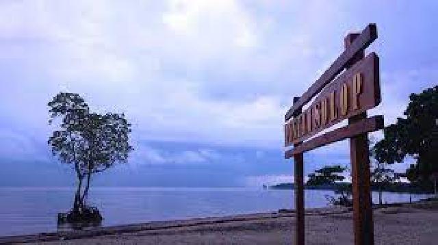Mulai Hutan Mangrove Flora dan Fauna Hingga Pasir Sersah di Pantai Solop